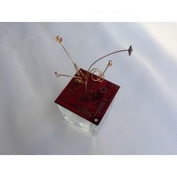 precieuse 17066 - Boite - Circuit imprimé